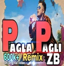 Pagla Pagli Rap Song - ZB
