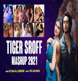 Tiger Shroff Mashup Song 2021 - DJ Dalal London x VDj Jakaria