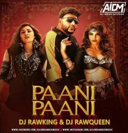 Paani Paani (Remix) - DJ RawKing