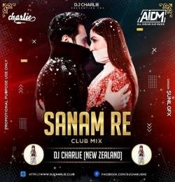 Sanam Re  Remix  - DJ Charlie