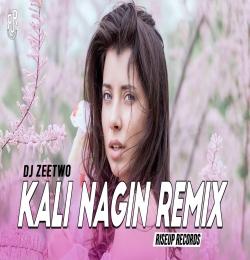 Kali Nagin Remix (Mann) Deejay Zeetwo