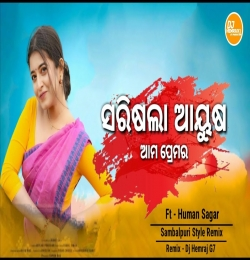 Sari Gala Aayush ( Desi Tapori PorMix ) DjHemrajG7
