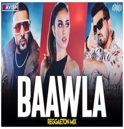 Baawla Reggaeton Mix - DJ Ravish, DJ Chico