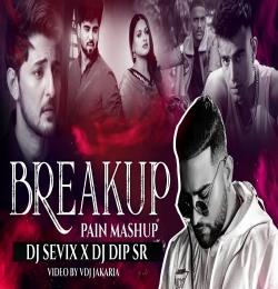 Breakup Pain Mashup 2021 - DJ Sevix X Dip SR x VDj Jakaria